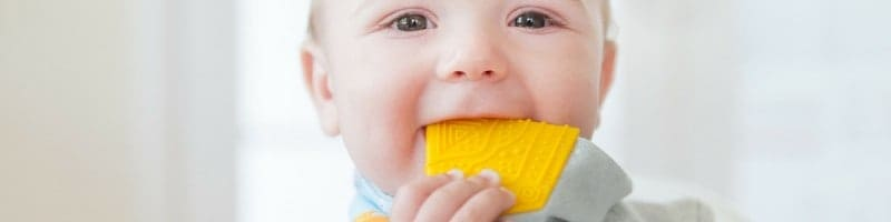 Dribble and Chew Teething Bibs